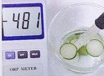 抗酸化力の高い食べ物キュウリの酸化還元電位